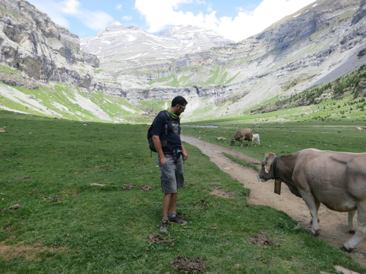 ordesa pyrenees cola de caballo meadow
